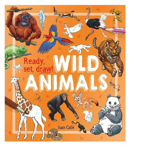 Ready Set Draw How to Draw Wild Animals
