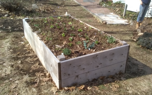 Pre-built Raised Bed Garden - Delivered and Filled