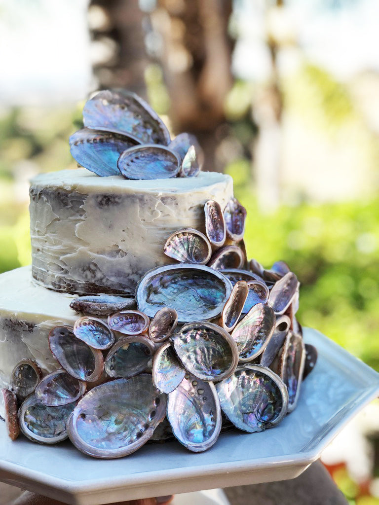 nautical shell wedding cake