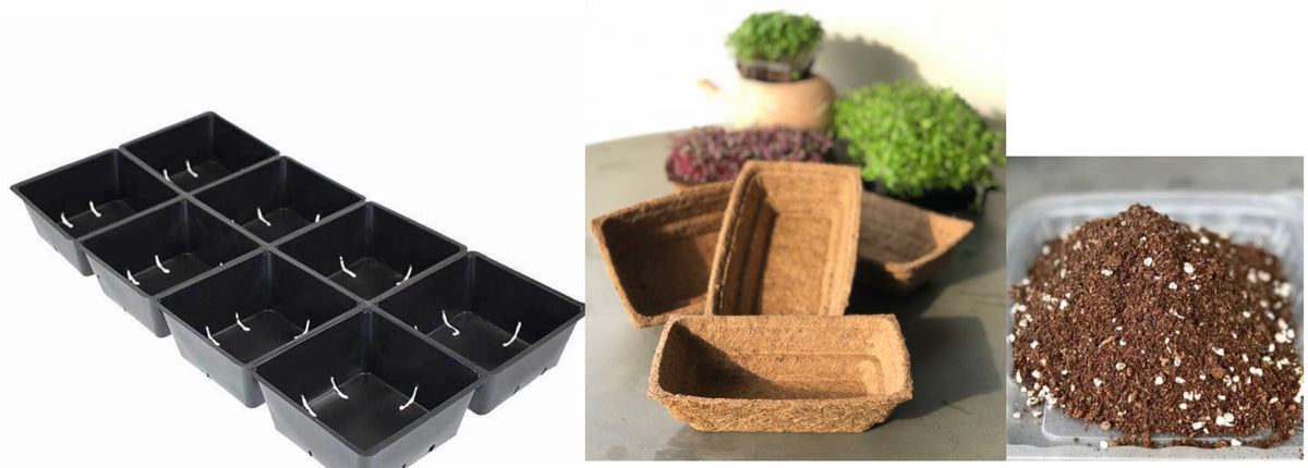 Planting Pots & Accessories – everythinggreen sg