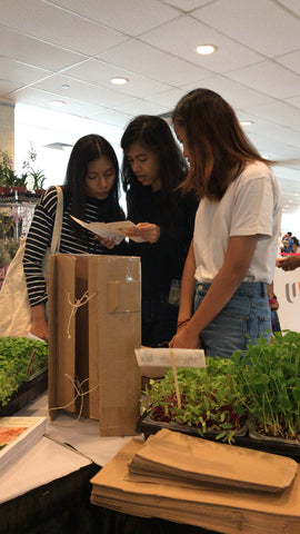Farmers Market, Singapore, Everything Green, Microgreens in Singapore, Buy, Grow,