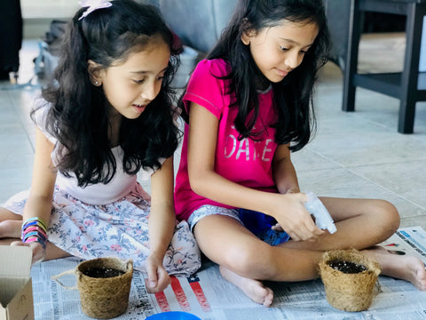 children, kids, grow vegetables, singapore, learn, teach, how to, growing kits, seeds,
