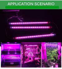 plant lights, ikea plant lights, how to grow edibles indoors, grow edible plants indoors, tomato grow lights, singapore, buy, online, lettuce grow lights, vegetable grow lights, grow lights indoor farming, singapore, buy online