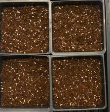 Seedling / Germination Mix For Microgreens & Vegetable Seeds - ReadyToGrow Mix