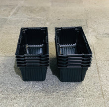 small tray insert, microgreen grow trays, singapore, everything green,