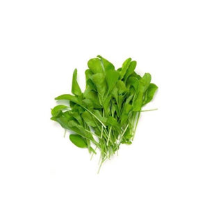 Buy Spinach microgreen seeds singapore