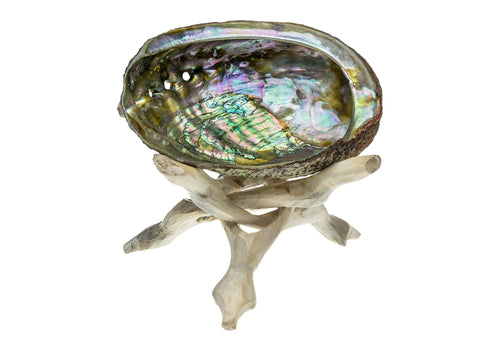 Abalone Smudge Bowl and Stand