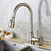 Classic Pull Down Dual Spray Kitchen Faucet