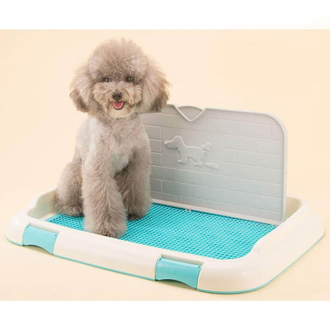 Indoor Dog Potty Tray Functions