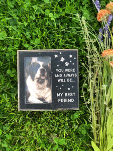My Best Friend Frame