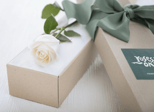 Single White Cream Rose Gift Box