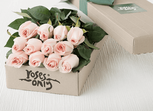 Mother's Day 12 Pastel Roses Gift Box