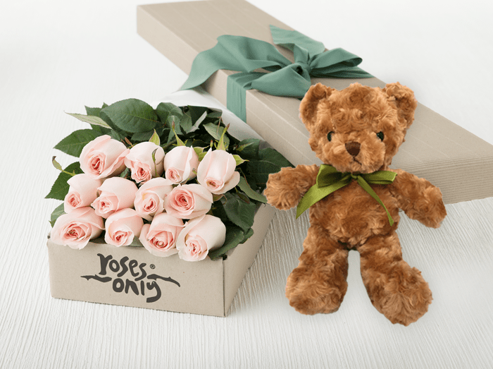 12 Pastel Pink Roses Gift Box & Teddy Bear