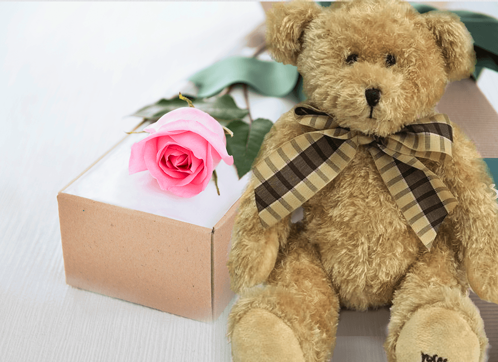 Single Pastel Pink Rose Gift Box & Teddy Bear