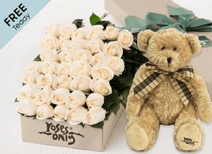 36 White Cream Easter Roses Gift Box and Free Teddy