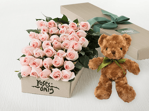 36 Pastel Pink Roses Gift Box & Teddy Bear