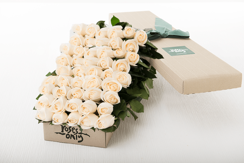 50 White Cream Roses Gift Box