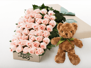 50 Pastel Pink Roses Gift Box & Teddy Bear