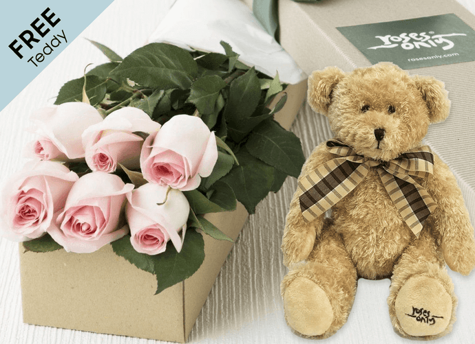 6 Pastel Pink Easter Roses Gift Box and Free Teddy