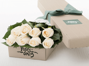 8 White Cream Roses Gift Box