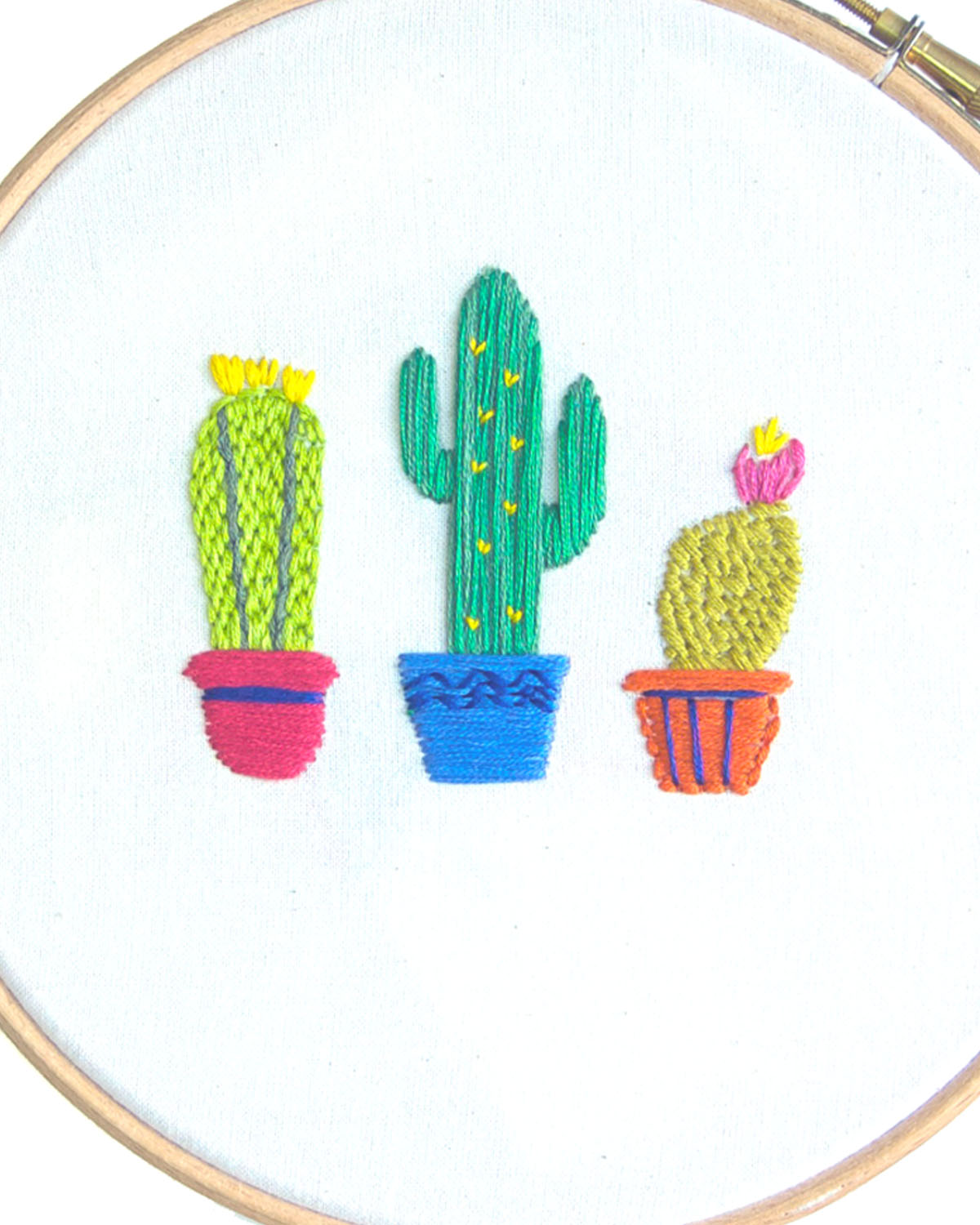 Cactus Hand Embroidery Design Kit