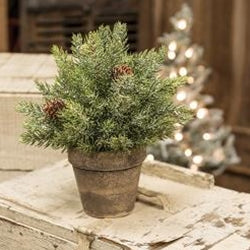 Frosted Spruce Sphere w/Pot, 9