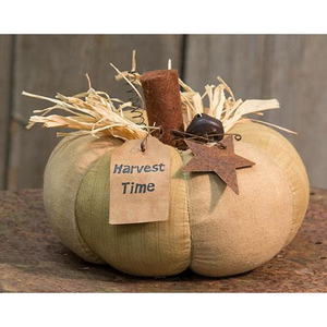 Harvest Time Pumpkin