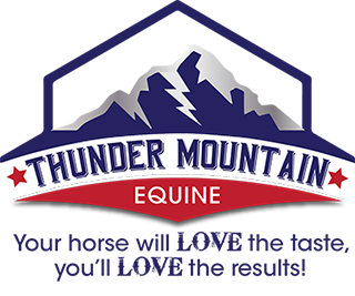 Thunder Mountain Equine