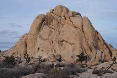 outcrop mt