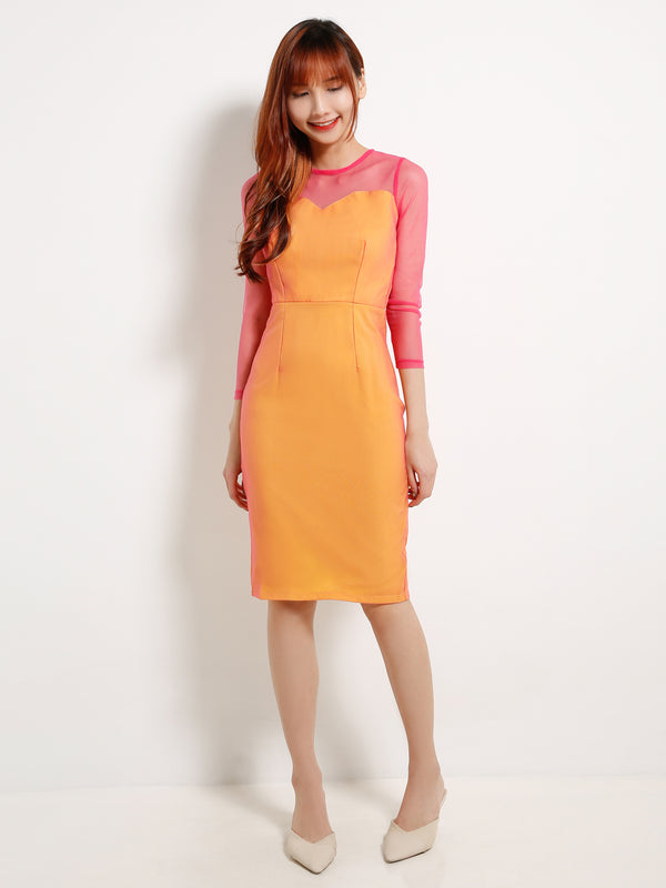 Net Sleeve Dual Tone Dress 13032