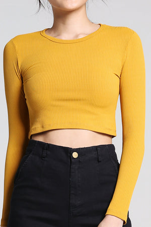 Knit Crop Top 2243