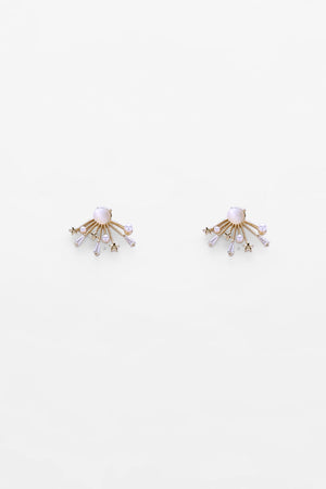 Earrings EA1734