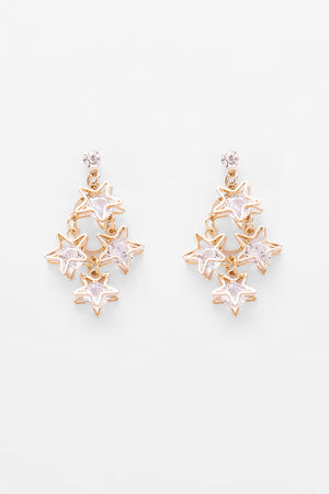 Earrings EA1915