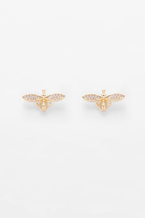 Earrings EA1919