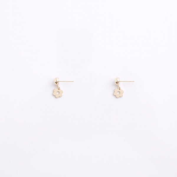 Earrings EA2028