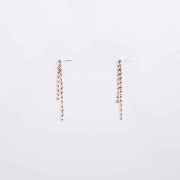 Earrings EA2037
