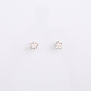 Earrings EA2042