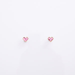 Earrings EA2098