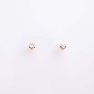 Earrings EA2104