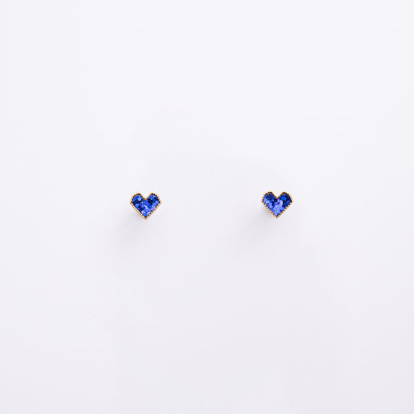 Earrings EA2105