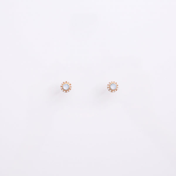 Earrings EA2106