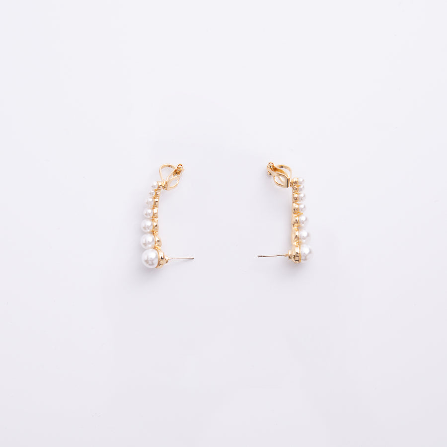 Earrings EA2107