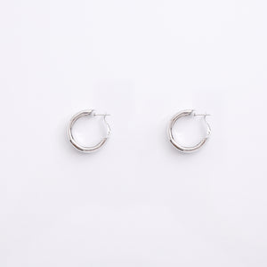 Earrings EA2153