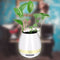 Piano Pot - Bluetooth Touch Sensitive Musical Flower Pot