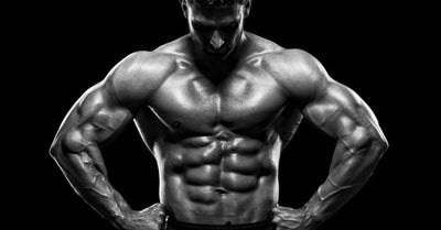 1.2) Ligandrol - LGD 4033 - LEAN MUSCLE GAINS