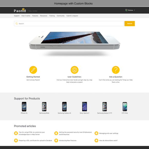 Diziana Paonid Theme Homepage with Custom Blocks