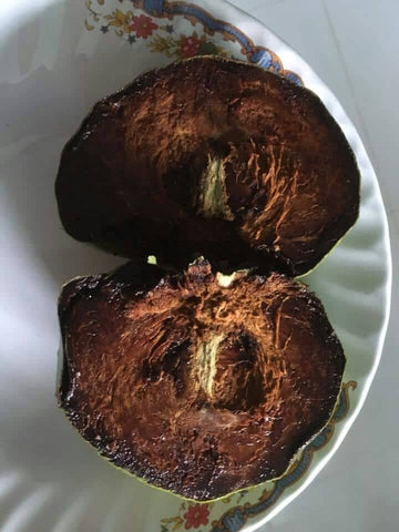 Giant Jumbo Black Sapote tree ( Chocolate pudding tree) Bigger and Sweeter - Malaysia Online Plant Nursery