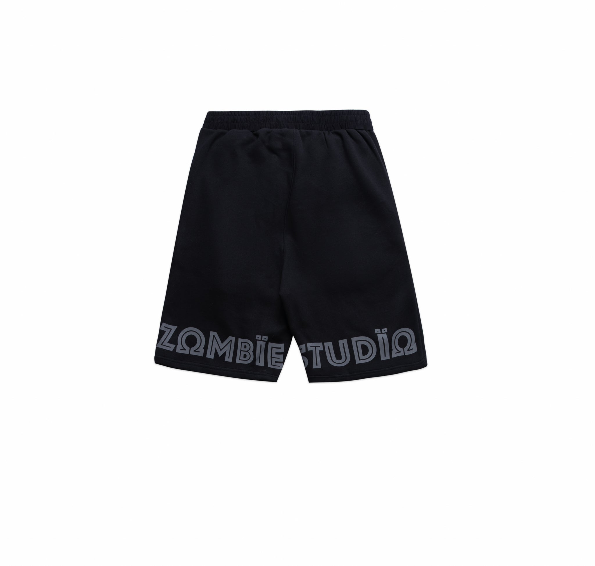 ZB Reflection Short In Black