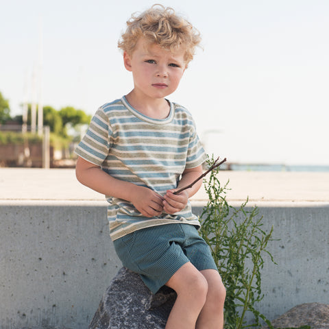 Organic Woven Striped Shorts - Lakestripe - 6-7y