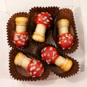 Amanita muscaria Chocolates